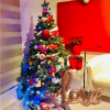 Season's Greetings and 'The Beauty of the Living Christmas Tree'