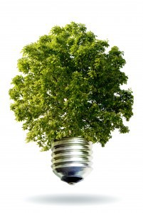 eco concept symbolizing the alliance technology nature, transformation of the solar energy, energy obtainable from the sun
